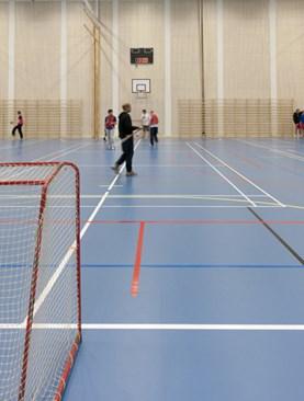 env_i80_sports-hall
