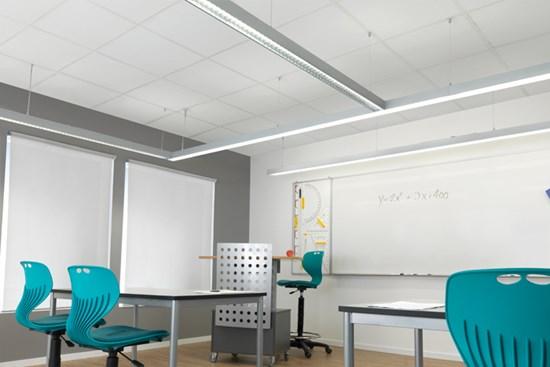 web_c50-p_school