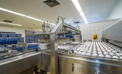food_processing_1