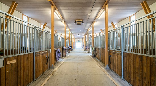 env_i41_stables