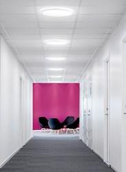 env_a51-r_corridor_pink-wall_web