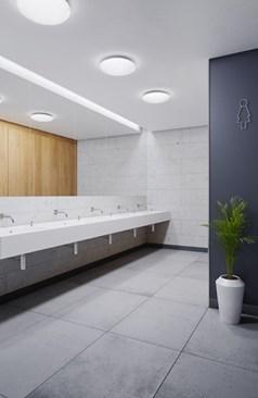 a25_toilet